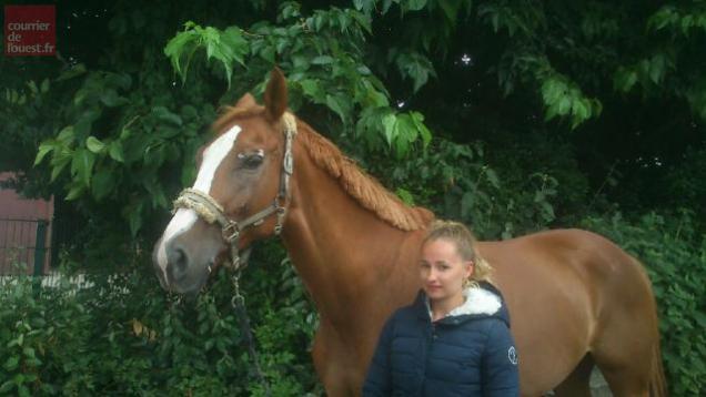 Le cheval est reparti à Pau dans le courant de ce mardi après-midi.