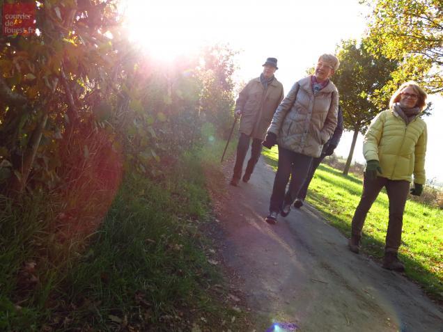 Téléthon, randonnée, 2013, Cholet
