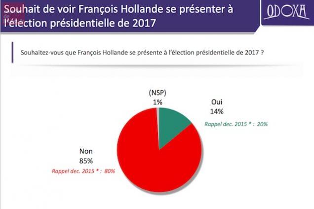 popularité hollande dernier sondage