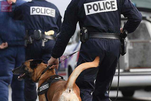 angers la pause pipi du chien policier m ne 9 kg de drogue courrier de l 39 ouest. Black Bedroom Furniture Sets. Home Design Ideas